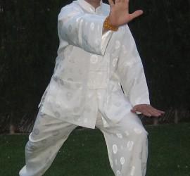 Cepillar la rodilla Yang Taichi